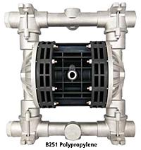 Model B251